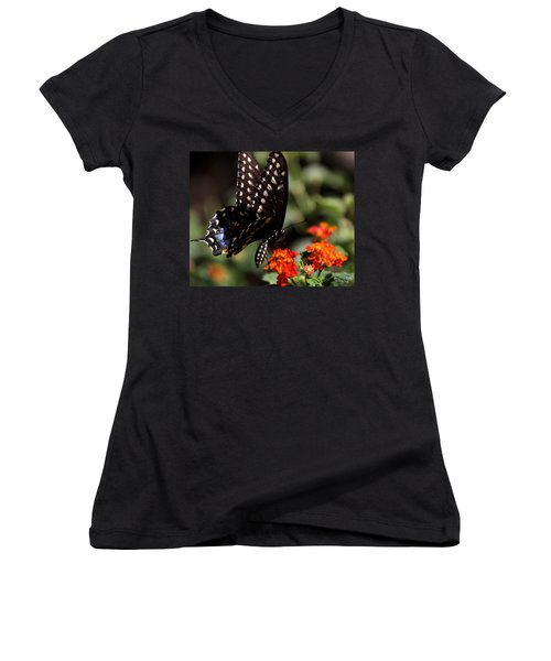Lunch On The Fly Women's V-Neck T-Shirt (Junior Cut) by Joe Kozlowski