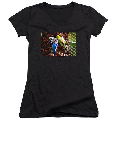 Parakeets Women's V-Neck T-Shirt (Junior Cut) by Pati Photography