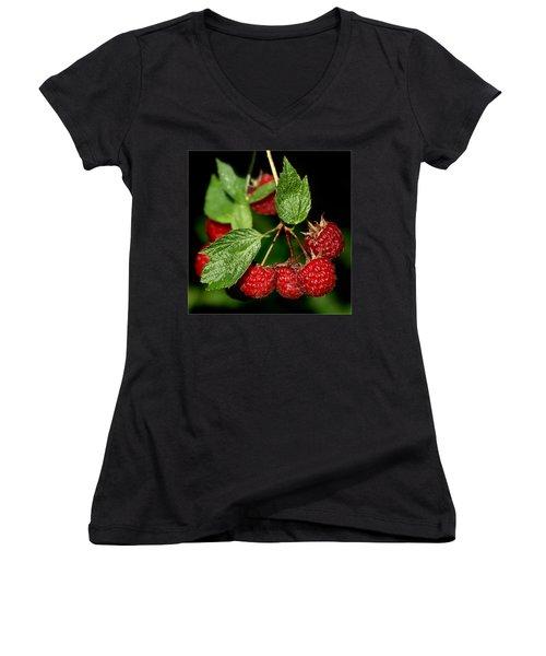 Raspberries Women's V-Neck T-Shirt (Junior Cut) by Nikolyn McDonald
