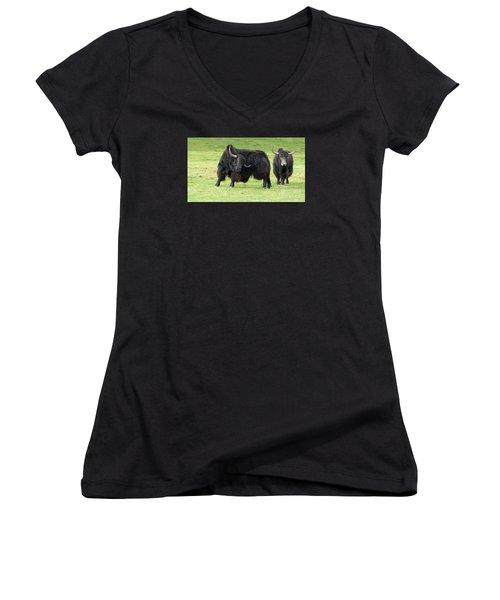 Yaketty Yak Women's V-Neck T-Shirt (Junior Cut) by Liz Leyden