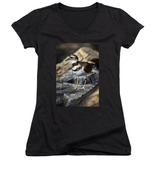 Killdeer Women's V-Neck T-Shirt (Junior Cut) by Saija  Lehtonen