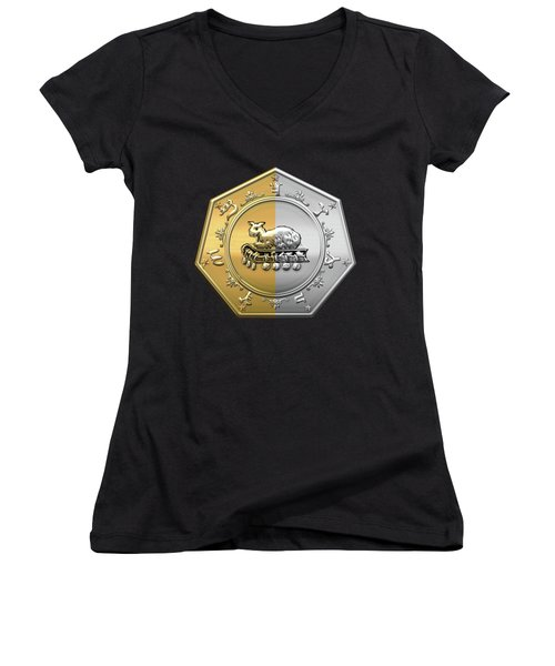 17th Degree Mason - Knight Of The East And West Masonic Jewel  Women's V-Neck T-Shirt (Junior Cut) by Serge Averbukh