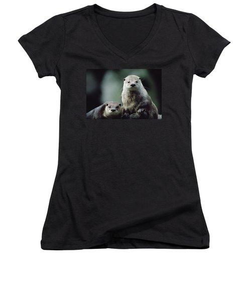 North American River Otter Lontra Women's V-Neck T-Shirt (Junior Cut) by Gerry Ellis