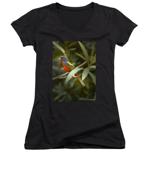 Painted Bunting Male Women's V-Neck T-Shirt (Junior Cut) by Phill Doherty
