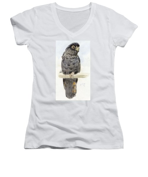 A Black Cockatoo Women's V-Neck T-Shirt (Junior Cut) by Henry Stacey Marks
