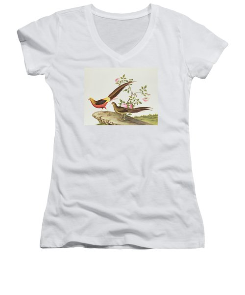 A Golden Pheasant Women's V-Neck T-Shirt (Junior Cut) by Chinese School