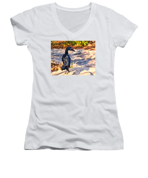 Abyssinian Ground Hornbill Women's V-Neck T-Shirt (Junior Cut) by Chris Flees