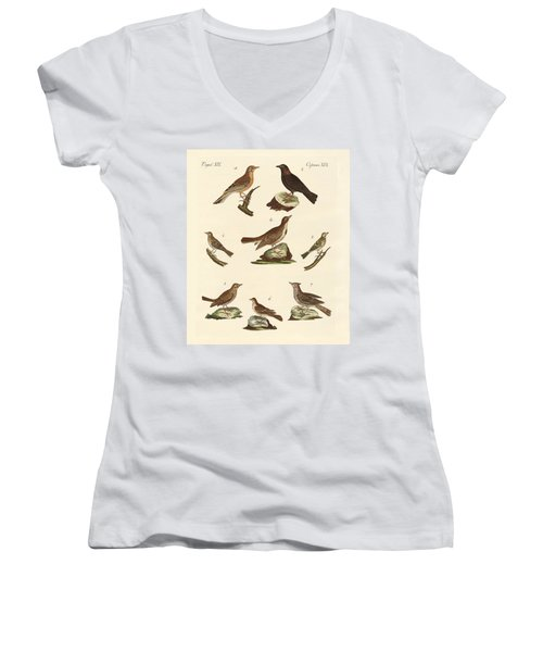 Different Kinds Of Larks Women's V-Neck T-Shirt (Junior Cut) by Splendid Art Prints