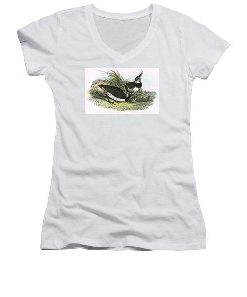 Lapwing Women's V-Neck T-Shirt (Junior Cut) by English School