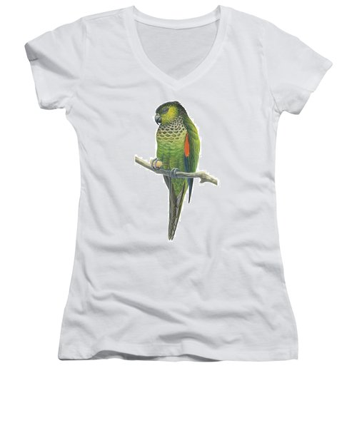 Rock Parakeet Women's V-Neck T-Shirt (Junior Cut) by Anonymous