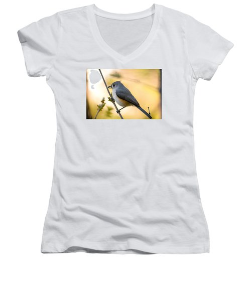 Titmouse In Gold Women's V-Neck T-Shirt (Junior Cut) by Shane Holsclaw