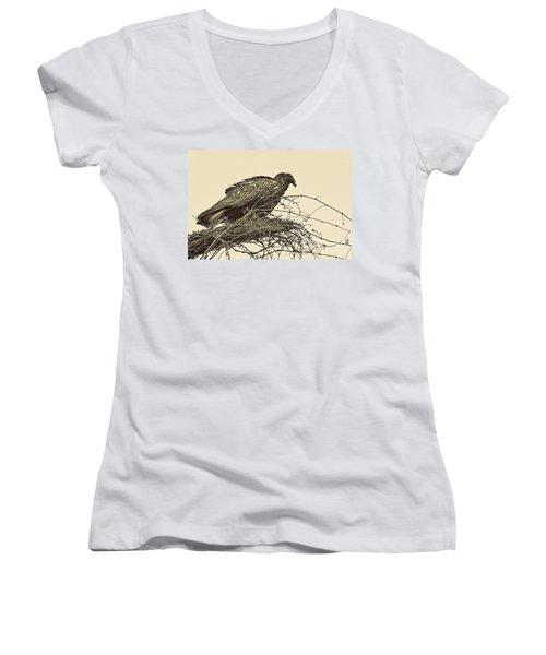 Turkey Vulture V2 Women's V-Neck T-Shirt (Junior Cut) by Douglas Barnard