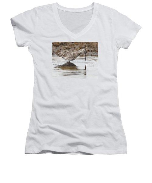 Willet Women's V-Neck T-Shirt (Junior Cut) by Bill Wakeley