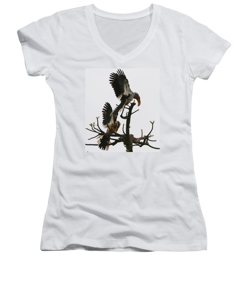 Hornbill Courtship Women's V-Neck T-Shirt (Junior Cut) by Bruce J Robinson