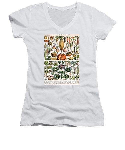 Illustration Of Vegetable Varieties Women's V-Neck T-Shirt (Junior Cut) by Alillot