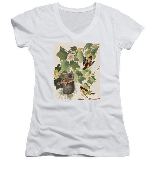 Baltimore Oriole Women's V-Neck T-Shirt (Junior Cut) by John James Audubon