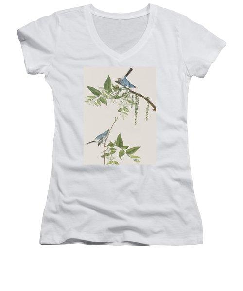 Blue Grey Flycatcher Women's V-Neck T-Shirt (Junior Cut) by John James Audubon