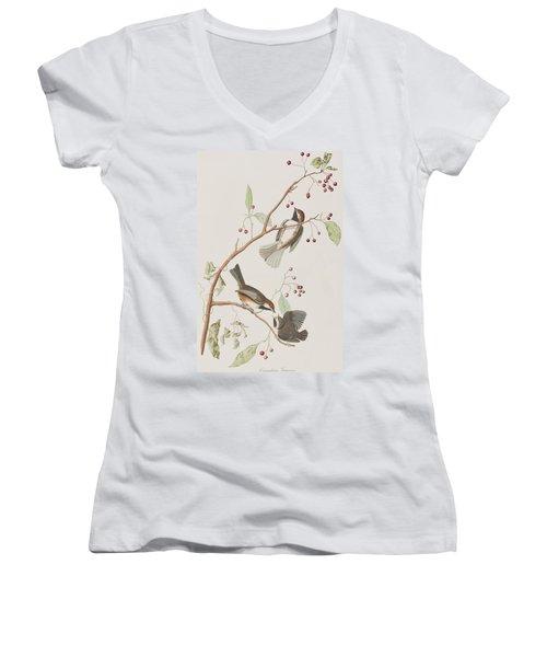 Canadian Titmouse Women's V-Neck T-Shirt (Junior Cut) by John James Audubon