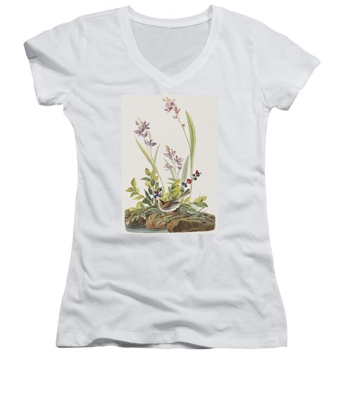 Field Sparrow Women's V-Neck T-Shirt (Junior Cut) by John James Audubon