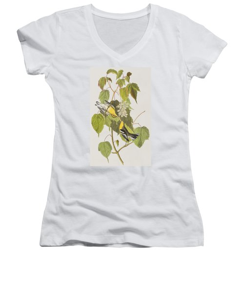 Hemlock Warbler Women's V-Neck T-Shirt (Junior Cut) by John James Audubon