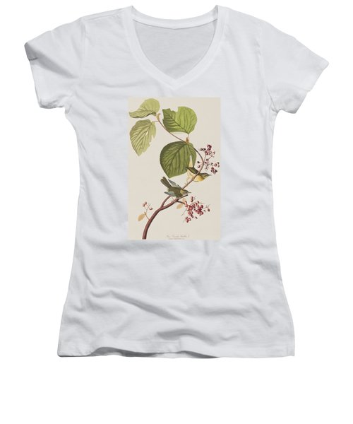 Pine Swamp Warbler Women's V-Neck T-Shirt (Junior Cut) by John James Audubon