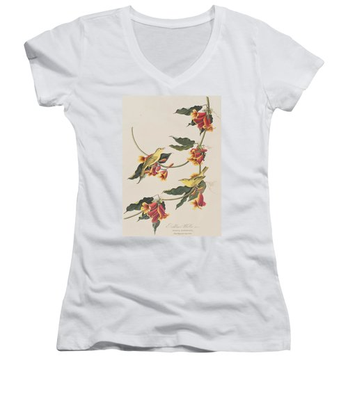 Rathbone Warbler Women's V-Neck T-Shirt (Junior Cut) by John James Audubon