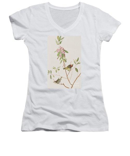 Ruby Crowned Wren Women's V-Neck T-Shirt (Junior Cut) by John James Audubon