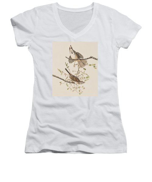 Song Sparrow Women's V-Neck T-Shirt (Junior Cut) by John James Audubon