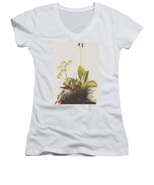 Wood Wren Women's V-Neck T-Shirt (Junior Cut) by John James Audubon