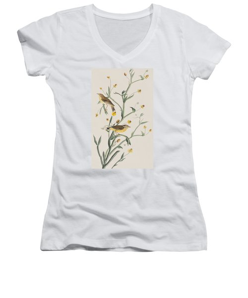 Yellow Red-poll Warbler Women's V-Neck T-Shirt (Junior Cut) by John James Audubon
