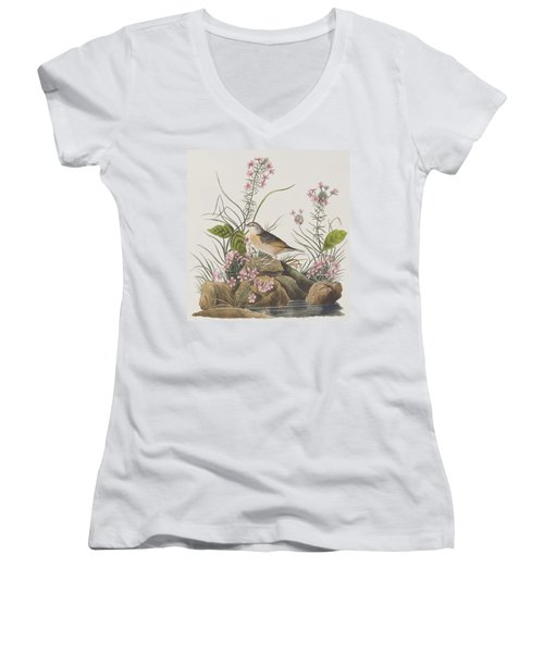 Yellow-winged Sparrow Women's V-Neck T-Shirt (Junior Cut) by John James Audubon