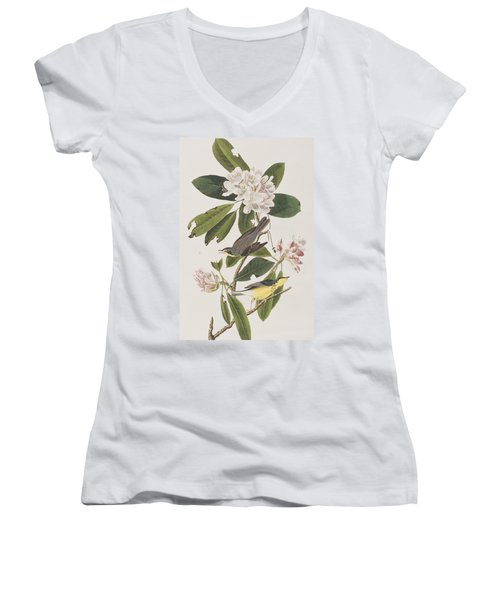 Canada Warbler Women's V-Neck T-Shirt (Junior Cut) by John James Audubon