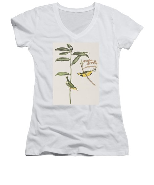 Hooded Warbler  Women's V-Neck T-Shirt (Junior Cut) by John James Audubon