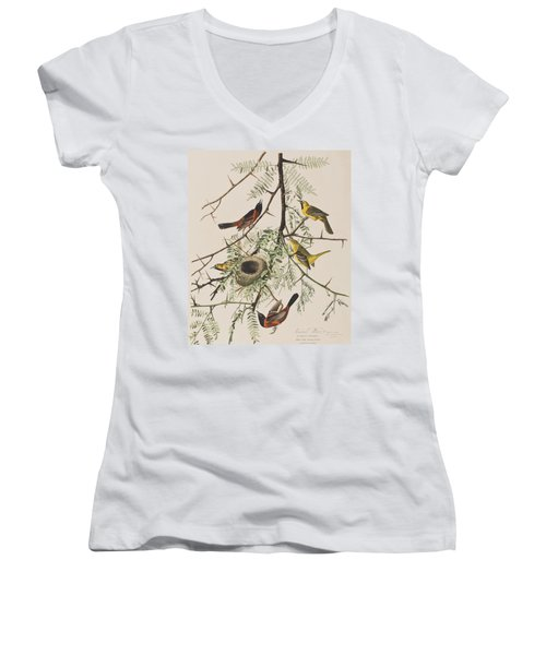 Orchard Oriole Women's V-Neck T-Shirt (Junior Cut) by John James Audubon