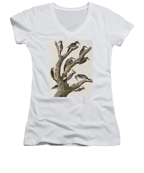 Woodpeckers Women's V-Neck T-Shirt (Junior Cut) by John James Audubon