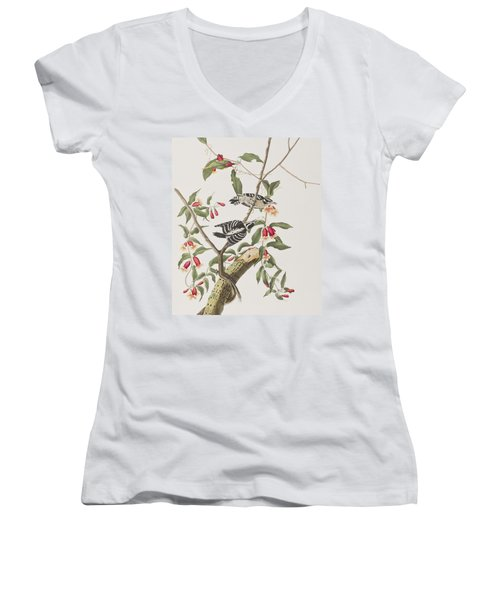 Downy Woodpecker Women's V-Neck T-Shirt (Junior Cut) by John James Audubon