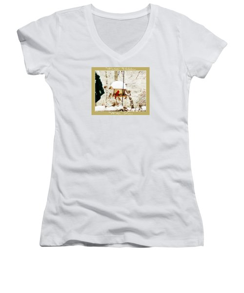 Winter Holiday Women's V-Neck T-Shirt (Junior Cut) by Anita Faye