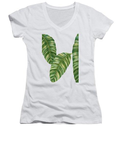 Rainforest Resort - Tropical Banana Leaf  Women's V-Neck T-Shirt (Junior Cut) by Audrey Jeanne Roberts