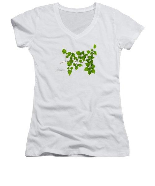 Hawthorn Women's V-Neck T-Shirt (Junior Cut) by Christina Rollo
