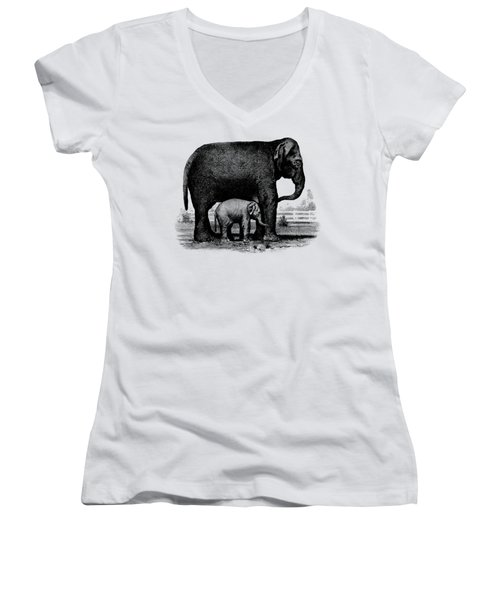 Baby Elephant T-shirt Women's V-Neck T-Shirt (Junior Cut) by Edward Fielding