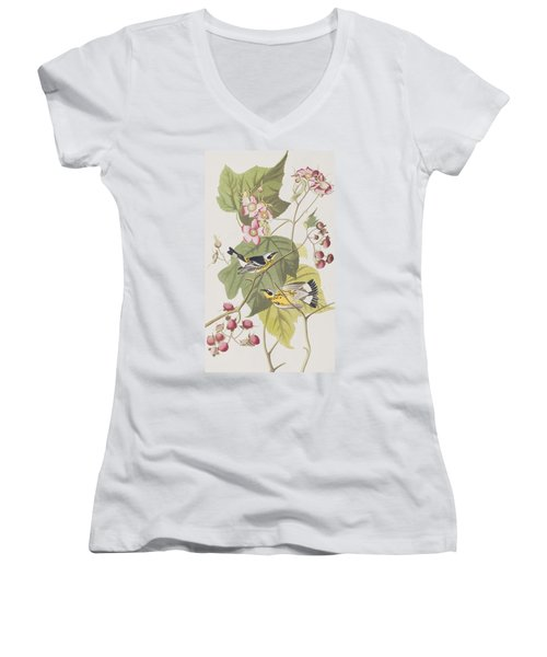 Black And Yellow Warblers Women's V-Neck T-Shirt (Junior Cut) by John James Audubon