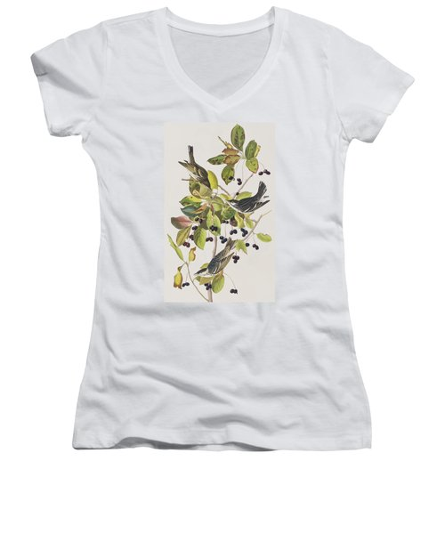 Black Poll Warbler Women's V-Neck T-Shirt (Junior Cut) by John James Audubon