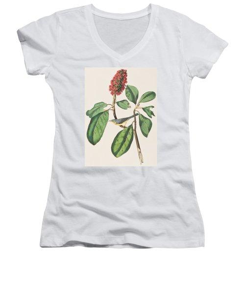 Bonaparte's Flycatcher Women's V-Neck T-Shirt (Junior Cut) by John James Audubon