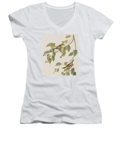 Carbonated Warbler Women's V-Neck T-Shirt (Junior Cut) by John James Audubon