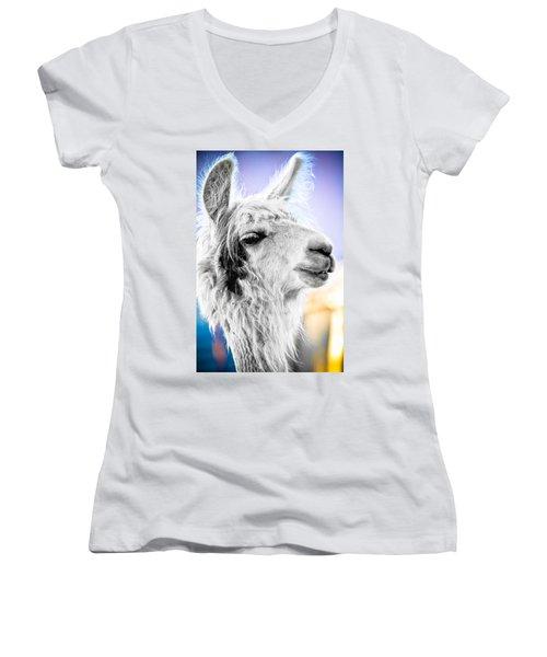 Dirtbag Llama Women's V-Neck T-Shirt (Junior Cut) by TC Morgan
