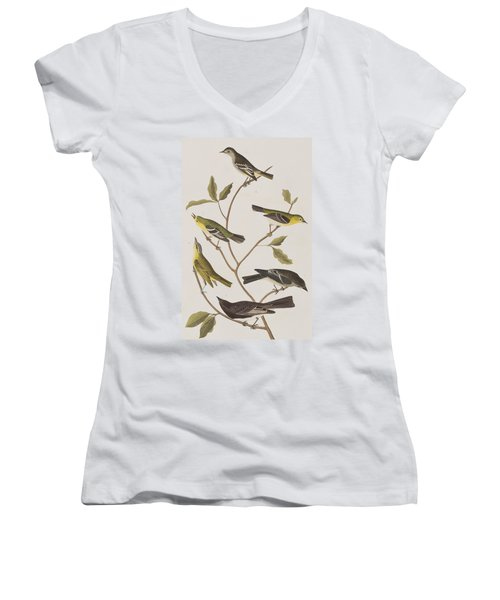 Fly Catchers Women's V-Neck T-Shirt (Junior Cut) by John James Audubon