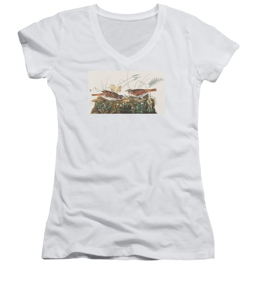 Fox Sparrow Women's V-Neck T-Shirt (Junior Cut) by John James Audubon