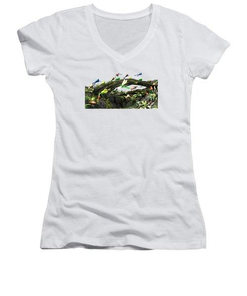 Frog Glen Women's V-Neck T-Shirt (Junior Cut) by Methune Hively