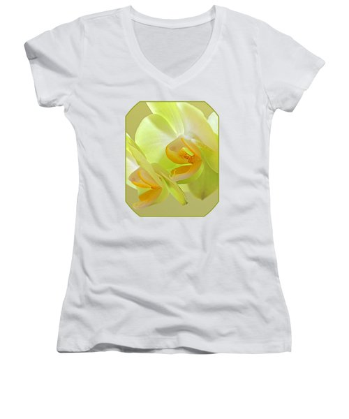 Glowing Orchid - Lemon And Lime Women's V-Neck T-Shirt (Junior Cut) by Gill Billington