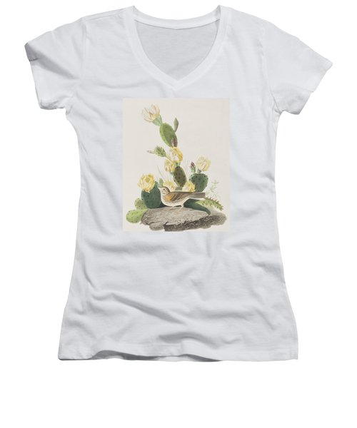 Grass Finch Or Bay Winged Bunting Women's V-Neck T-Shirt (Junior Cut) by John James Audubon